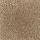 Aladdin Carpet: Classical Design II 15' Desert Mud